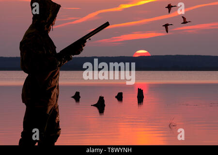silhouette of a waterfowler at sunset background on the waterfowl hunting - Stock Photo