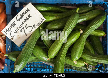 Cucumbers for sale in a blue basket - Stock Photo