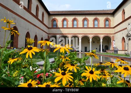 Milan/Italy - June 1, 2015: Ducal Court decorated with yellow Black-eyed Susan flowers and with internal ancient medieval arcades, water pool. - Stock Photo