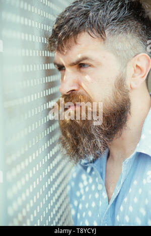 Bearded man look in perforated holes. Man with long beard and mustache on unshaven face. Fashion hipster with stylish hair and sunrays on shirt - Stock Photo