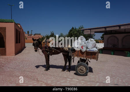 Mule-drawn carriage next to the jewish cemetery in Marrakesh, Morocco - Stock Photo