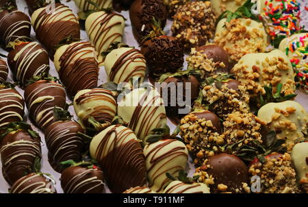 Different varieties of chocolate covered strawberries on display - Stock Photo