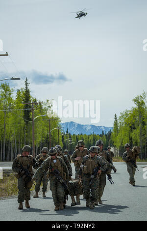 U.S. Marines with Echo Company, 2nd Battalion, 7th Marines, Special Purpose Marine Air Ground Task Force 7, simulate a medical evacuation during exercise Northern Edge (NE), May 14, 2019 at Fort Greely, Alaska. Approximately 10,000 U.S. military personnel will participate in exercise NE 2019, a joint training exercise hosted by U.S. Pacific Air Forces that prepares joint forces to respond to crises in the Indo-Pacific region. (U.S. Marine Corps photo by Staff Sgt. Gabriela Garcia) - Stock Photo