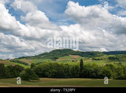 France, Jura, Arbois, vineyard landscape in the commune of Pupillin, famous terroir of the Jura wine - Stock Photo
