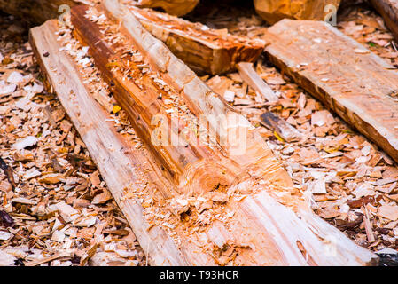 Wood chips. Natural bright yellow colored wooden shavings for protecting plants on flower beds and lawns. With a flower bed fragment. Alternative to a - Stock Photo