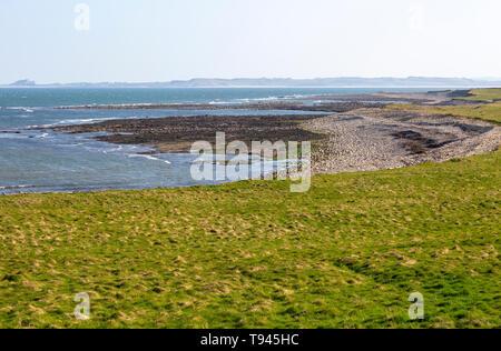 Coastline landscape scenery looking south, Holy Island, Lindisfarne, Northumberland, England, UK - Stock Photo