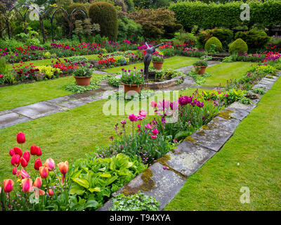 Chenies Manor House Sunken garden in May with vivid tulip varieties on a showery afternoon; plant borders, wet paving, ornamental pond and statue.. - Stock Photo