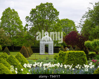 Chenies Manor Gardens, Parterre with White Pagoda bordered by White Tulip Triumphator - Stock Photo