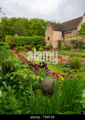 Chenies Manor Sunken garden in Spring with vibrant tulips; portrait view of plant borders, grass paths with restored pavilion.. - Stock Photo