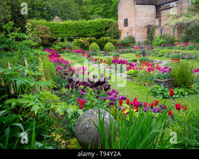Chenies Manor House Sunken garden in Spring with tulips - Stock Photo