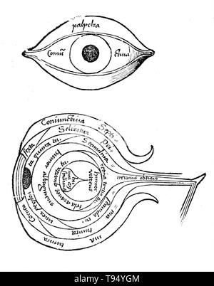 Diagram of the eye from Margarita philosophica by Gregor Reisch (1467-1525) was a German Carthusian humanist writer. His chief work is the Margarita philosophica, which first appeared at Freiburg in 1503. It is an encyclopedia of knowledge intended as a textbook for students, and contains in twelve books Latin grammar, dialectics, rhetoric, arithmetic, music, geometry, astronomy, physics, natural history, physiology, psychology, and ethics. The usefulness of the work was increased by numerous woodcuts and a full index. - Stock Photo