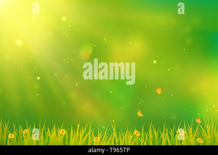Sunny summer or spring background. Blurred abstract design with green grass, flowers, butterflies and sunlight. Vector. - Stock Photo