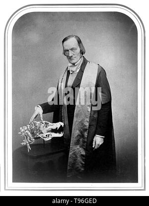 Richard Owen (July 20, 1804 - December 18, 1892) was an English biologist, comparative anatomist and paleontologist. One of his positions was that of prosector for the London Zoo, which meant that he had to dissect and preserve any zoo animals that died in captivity. This gave him vast experience with the anatomy of exotic animals. He produced a vast array of scientific work, but is probably best remembered today for coining the word Dinosauria. - Stock Photo