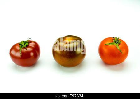 tasty colorful organic tomatoes of different types on a white background - Stock Photo