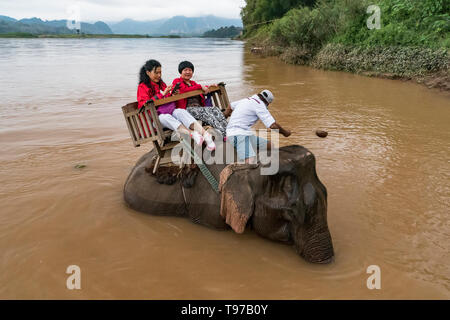 Chinese Tourists go on elephants trekking. Laos. Luang Prabang - 15 January 2019 - Stock Photo