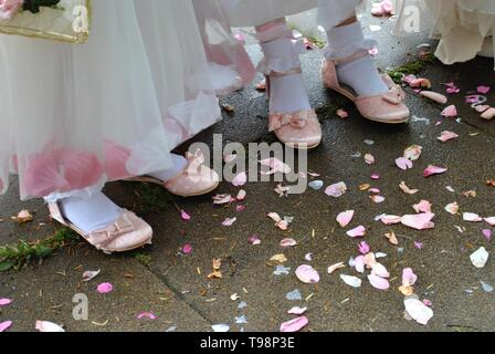 Pink ballet slippers and dresses of bridesmaids at an English wedding, with confetti - Stock Photo