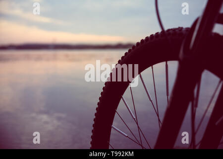 A wheel of bicycle in the evening,the sunset light. - Stock Photo