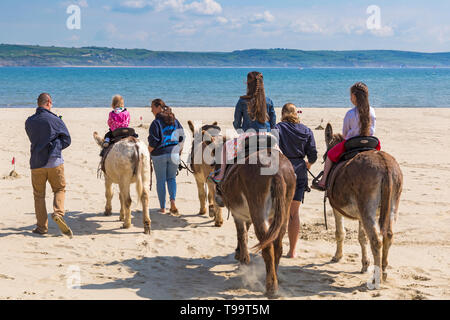 Sunny day at the seaside for donkey rides on Weymouth beach, Dorset UK in May - Stock Photo