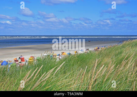 Scenic view to the beach and coastline of North Sea with reed infront - Stock Photo