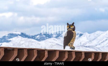 Panorama An owl sculpture on top of a snow coated roof viewed in winter - Stock Photo