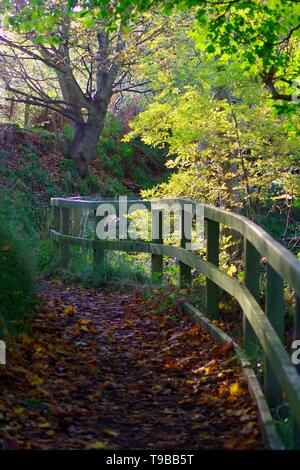 Wooden Fence by a Path along the River Don on an Autumn Day. Old Aberdeen, Scotland, UK. - Stock Photo