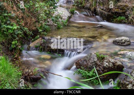Quiet stream between the woods in spring - Stock Photo