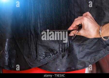 Close-up hairdresser cuts long black hair. Beauty shop - Stock Photo