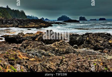 Wild Pacific Trail, Vancouver Island, British Colombia, Canada - Stock Photo