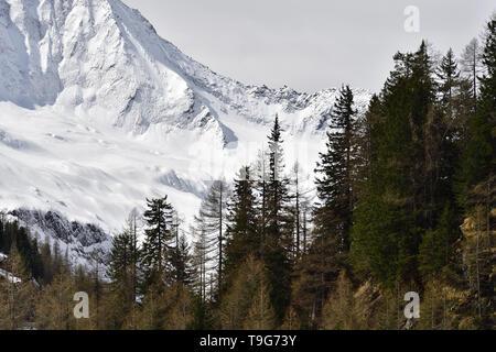 Picture taken in Chiareggio Valley, Rhaetian Alps - Stock Photo