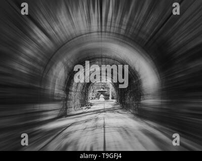 Abstract black and white scene, motion blur effect, of a tunnel alley in the Orangerie park in Strasbourg, France. - Stock Photo
