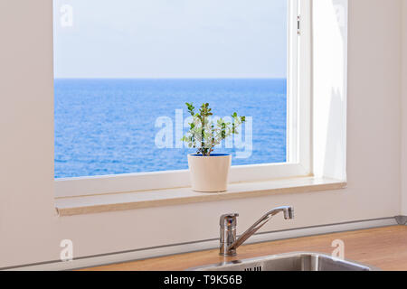 View of seascape through an open window in kitchen with flower in pot on windowsill - Stock Photo