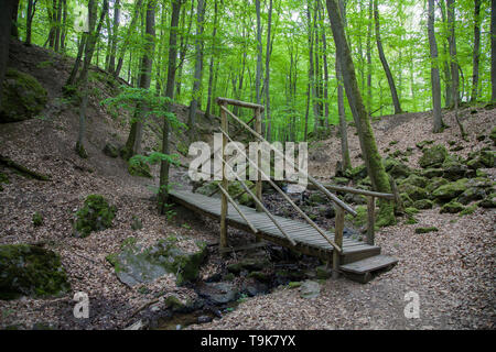 Wooden bridge over the stream Hasselbach at hiker trail Steckeschlääfer-Klamm, Binger forest, Bingen on the Rhine, Rhineland-Palatinate, Germany - Stock Photo