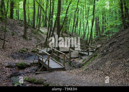 Wooden bridges over the stream Hasselbach at hiker trail Steckeschlääfer-Klamm, Binger forest, Bingen on the Rhine, Rhineland-Palatinate, Germany - Stock Photo