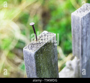 Old wooden fence and a rusty nail sticking out. - Stock Photo