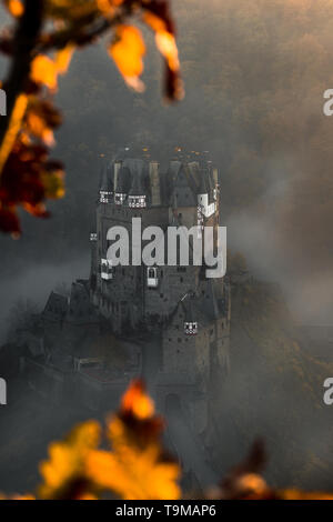 Burg Eltz / Castle Eltz during sunset on a misty autumn day with trees and leaves foreground and fog rolling through the valley (Wierschem, Germany) - Stock Photo