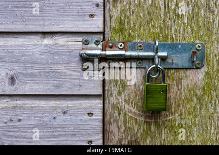 Padlock and bolt securing wooden shed door - Stock Photo