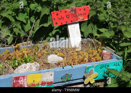 Bug hotel made from recycled wooden pallet by a hedgerow in a community field in spring with grass, nettles and other vegetation growing around it. - Stock Photo