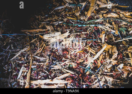 Various wood chips and garden clippings in a bin - Stock Photo