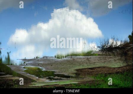 El cielo puede esperar / Parque Nacional Camino de Cruces, Panamá. - Stock Photo
