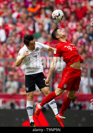 Munich, Deutschland. 18th May, 2019. NO SALES IN JAPAN Makoto HASEBE (# 20, left) from Frankfurt fight for the ball with Robert LEWANDOWSKI (# 9, M) during first halftime. Football, Bayern Munich (M) - Eintracht Frankfurt (F) 5: 1, German champion. Bundesliga, 34.matchday, season 2018/2019, on 18.05.2019 in Muenchen/ALLIANZARENA/Germany. Editorial Note: DFL regulations prohibit any use of photographs as image sequences and/or quasi-video. | usage worldwide Credit: dpa/Alamy Live News - Stock Photo