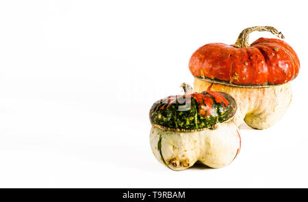 decorative pumpkins in the form of a mushroom. on a white background. - Stock Photo