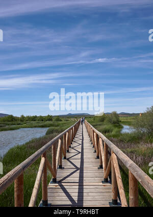 The wooden walkway leading over the edge of the Salt water Lagoon of Fuente de Piedra, with People walking on it. Andalucia, Spain - Stock Photo