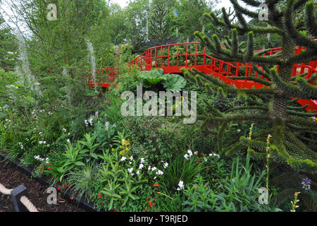 The Trailfinders Undiscovered Latin America Garden (designed by Jonathan Snow), one of the eleven beautiful and elegant show gardens on display at the 2019 RHS Chelsea Flower Show which opened today in the 11-acre grounds of the Royal Hospital Chelsea, London, United Kingdom - 20 May 2019  The garden is inspired by the temperate rainforests of South America which are little known in the UK but are home to a surprising number of well-known UK garden plants.  There are 26 themed gardens on display at this year's show as well as over 100 plant displays in the Great Pavilion. New plants are often  - Stock Photo