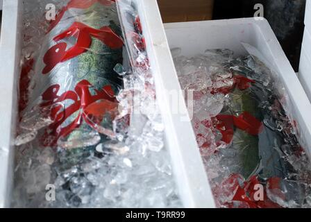 Fatty tuna packaged and waiting to be sold at the fish market in Tokyo, Japan - Stock Photo