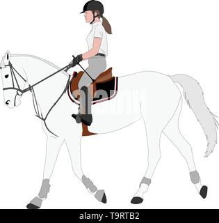 detailed color illustration of young female riding elegant horse - vector - Stock Photo