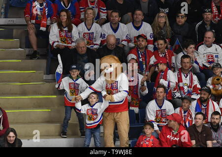 Bratislava, Slovakia. 21st May, 2019. Czech fans are seen during the match between Czech Republic and Switzerland within the 2019 IIHF World Championship in Bratislava, Slovakia, on May 21, 2019. Credit: Vit Simanek/CTK Photo/Alamy Live News - Stock Photo