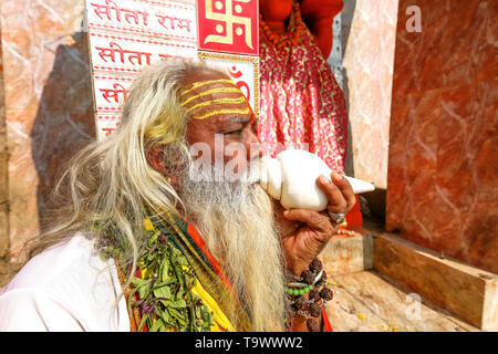 Indian Sadhu baba in portrait view playing conch shell in front of Hanuman temple at Varanasi India. - Stock Photo