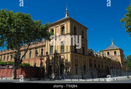 Baroque facade of the Palace of San Telmo in Seville at night, Spain. - Stock Photo