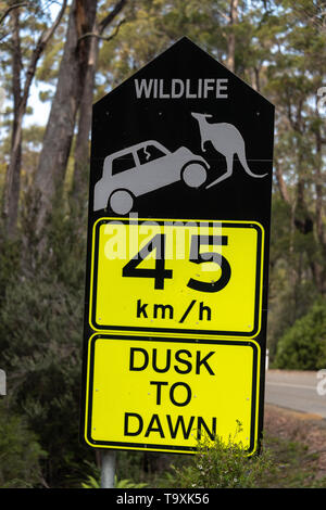 Wildlife Danger Road Sign, 45km Dusk to Dawn - Stock Photo