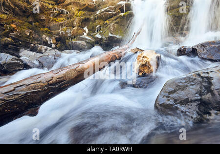 atmospheric stones and tree branch under small cascading waterfall